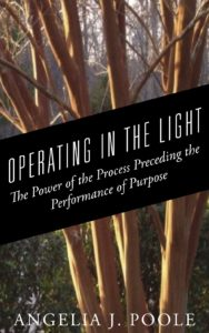 operating-in-the-light-fcover